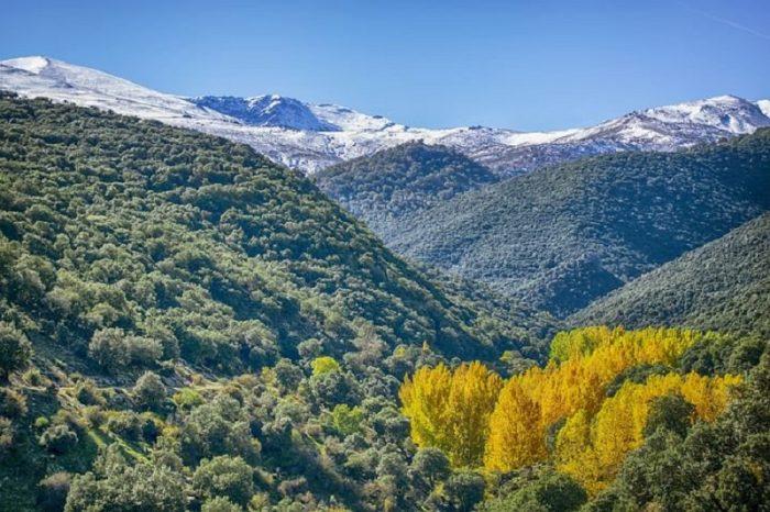 nature workshop in Granada