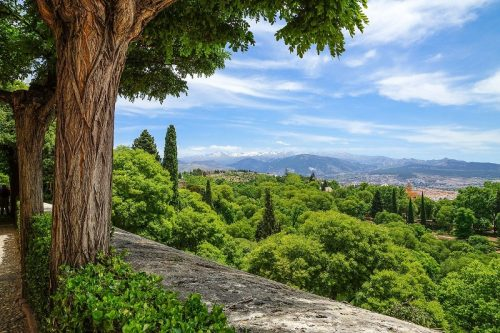 cultural route and wine tasting in Granada