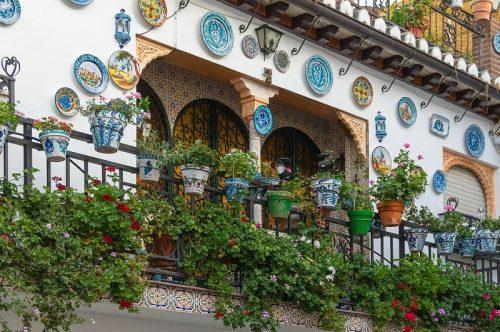 ruta cultural y cata de vinos en Granada