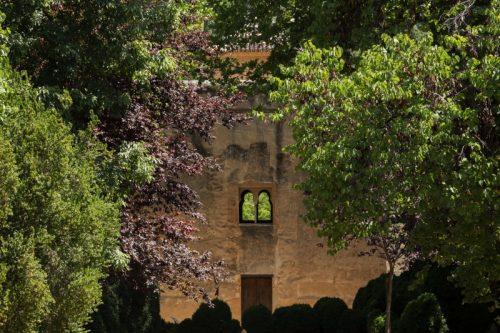 taller de fotografía en Granada